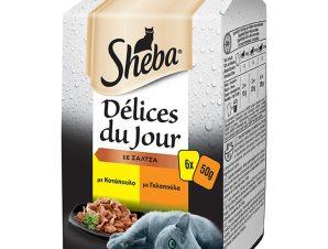 Γατοτροφή Delices du Jour Κοτόπουλο & Γαλοπούλα 6x50g